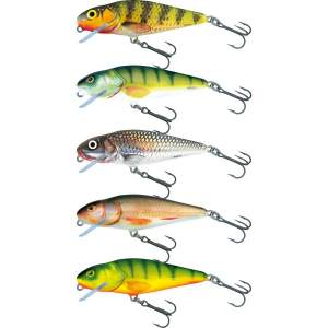 SALMO Perch Shallow Runner