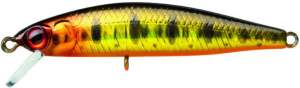 ILLEX Flat Fly 50 SP HL Gold Trout